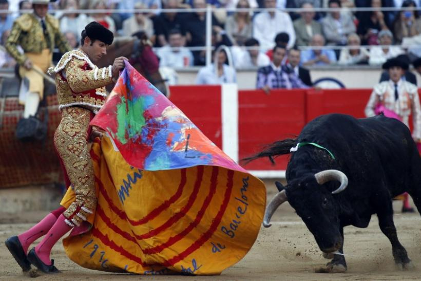 Spanish bullfighter Serafin Marin performs a pass to a bull