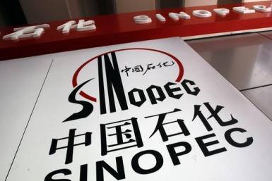 The Sinopec logo is seen at a gas station