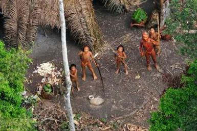 Brazilian govt knew of ancient uncontacted Amazon tribe, forbids outside contact