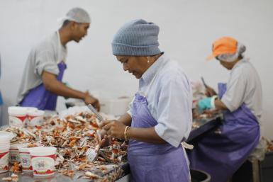 Seafood Processing Plant_US