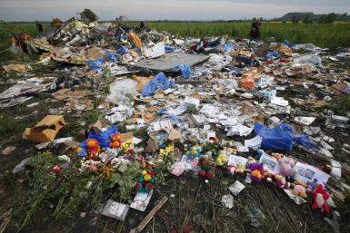 Malaysia Airlines Flight MH17 Crash Site-July 19, 2014