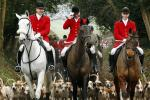 Fox Hunting UK