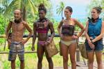 Survivor 2015 cast