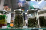 It may take some time before the new legalized marijuana measures take effect in states that voted on Tuesday.