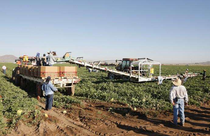 Mexican migrant workers in Dome Valley near Yuma