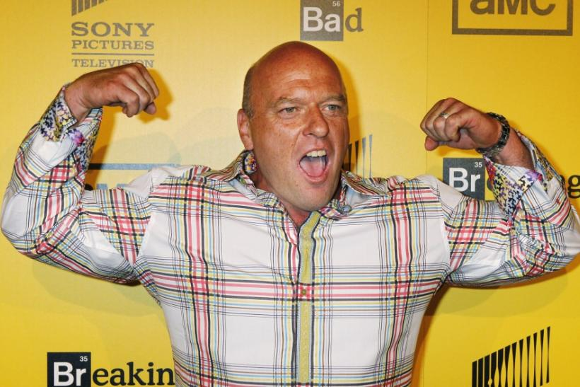 "Actor Dean Norris, star of AMC's drama television series ""Breaking Bad ..."