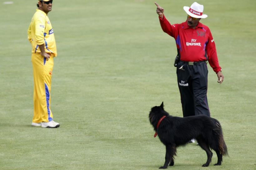 Umpire Hariharan orders dog off pitch in IPL Twenty20 cricket tournament between Mumbai Indians and Chennai Super Kings in Cape Town
