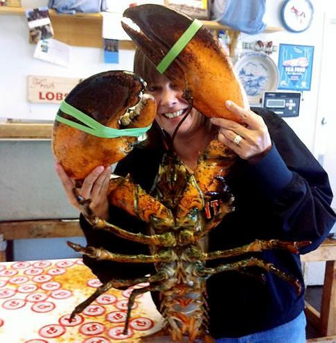 Giant Lobster is Latest Freak Show at Coney Island