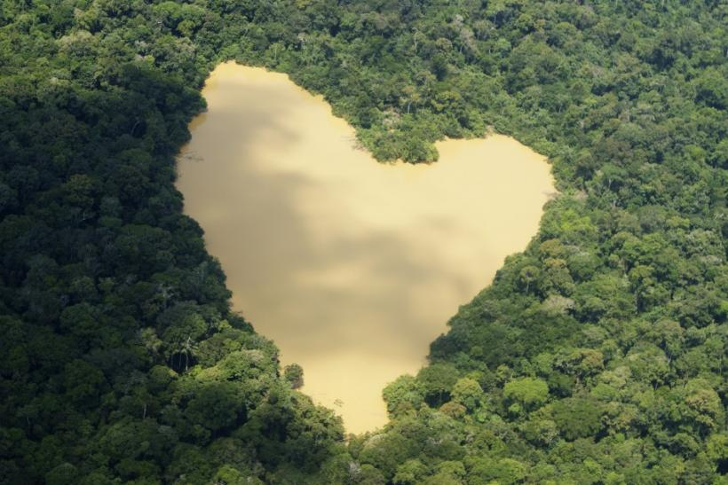 An aerial view of a natural lake fed by a spring in the Amazon River basin near Manaus