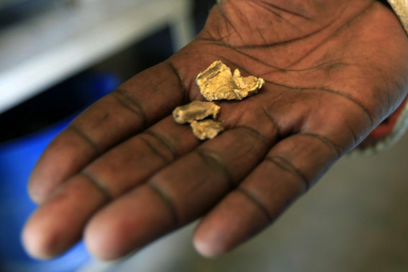 Worker holds freshly mined gold samples