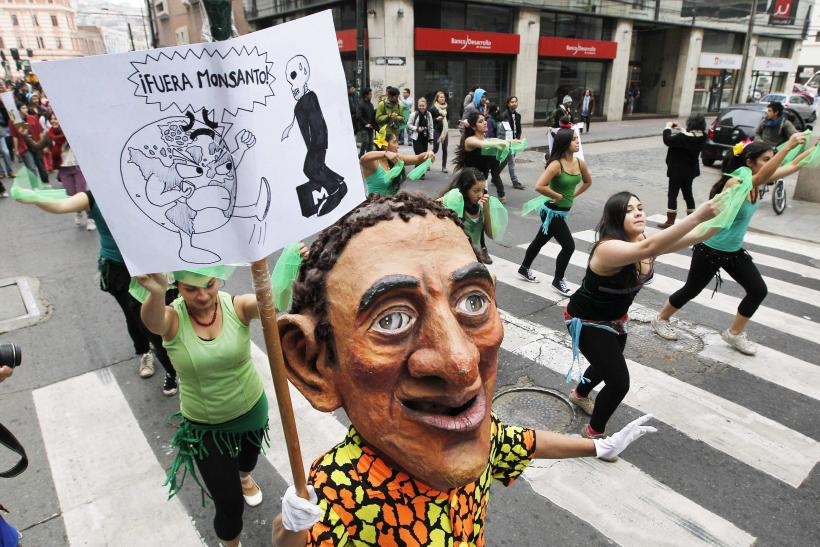 March Against Monsanto-Valparaiso, Chile-3A