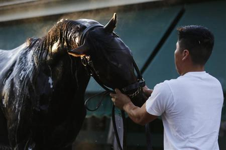 Orb 2013 Belmont Stakes