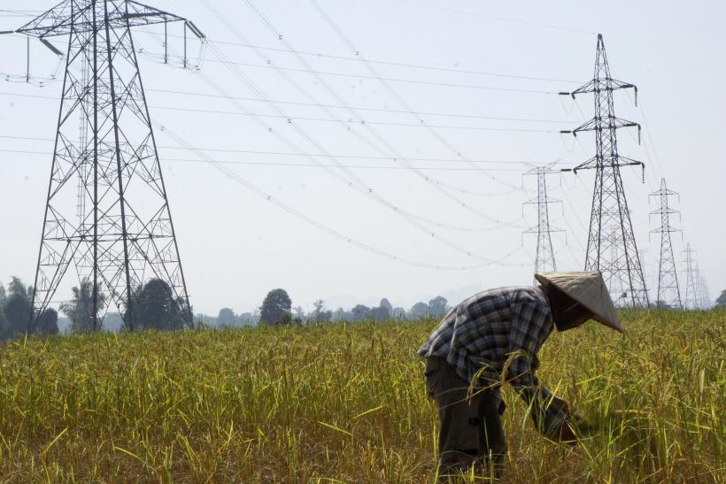 A farmer works in a paddy field under the power lines near Nam Theun 2 dam in Khammouane province.
