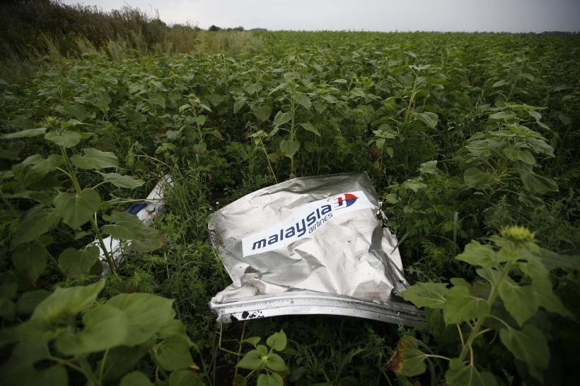 MH17Wreckage_1
