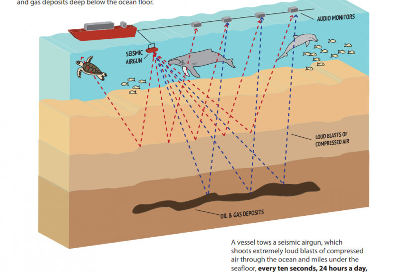 Offshore Oil Drilling Sonic Survey