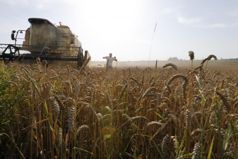 Climate Change Global Food Production