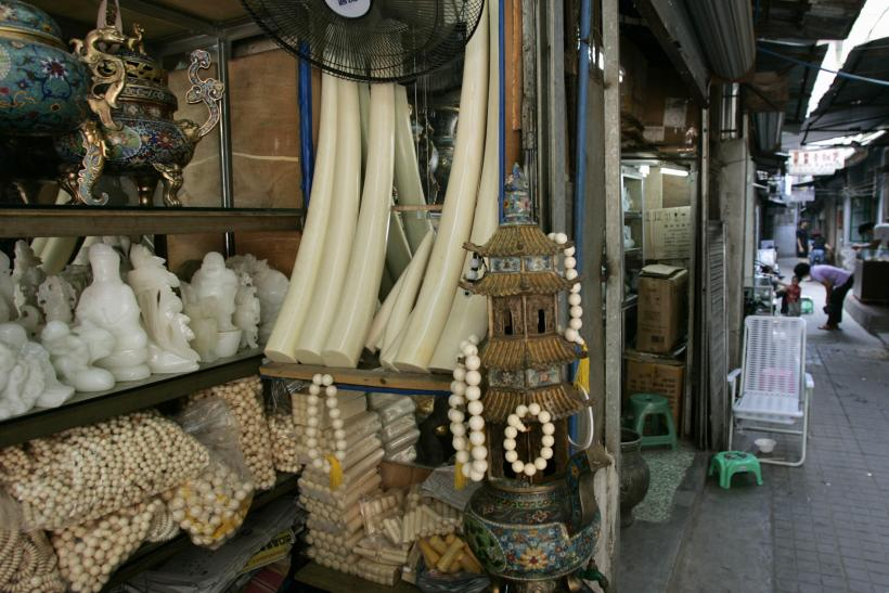 China Ivory Products